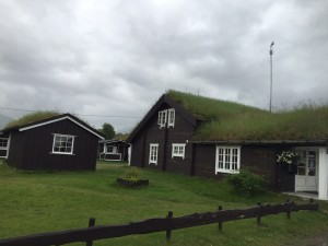 North Norway living roof